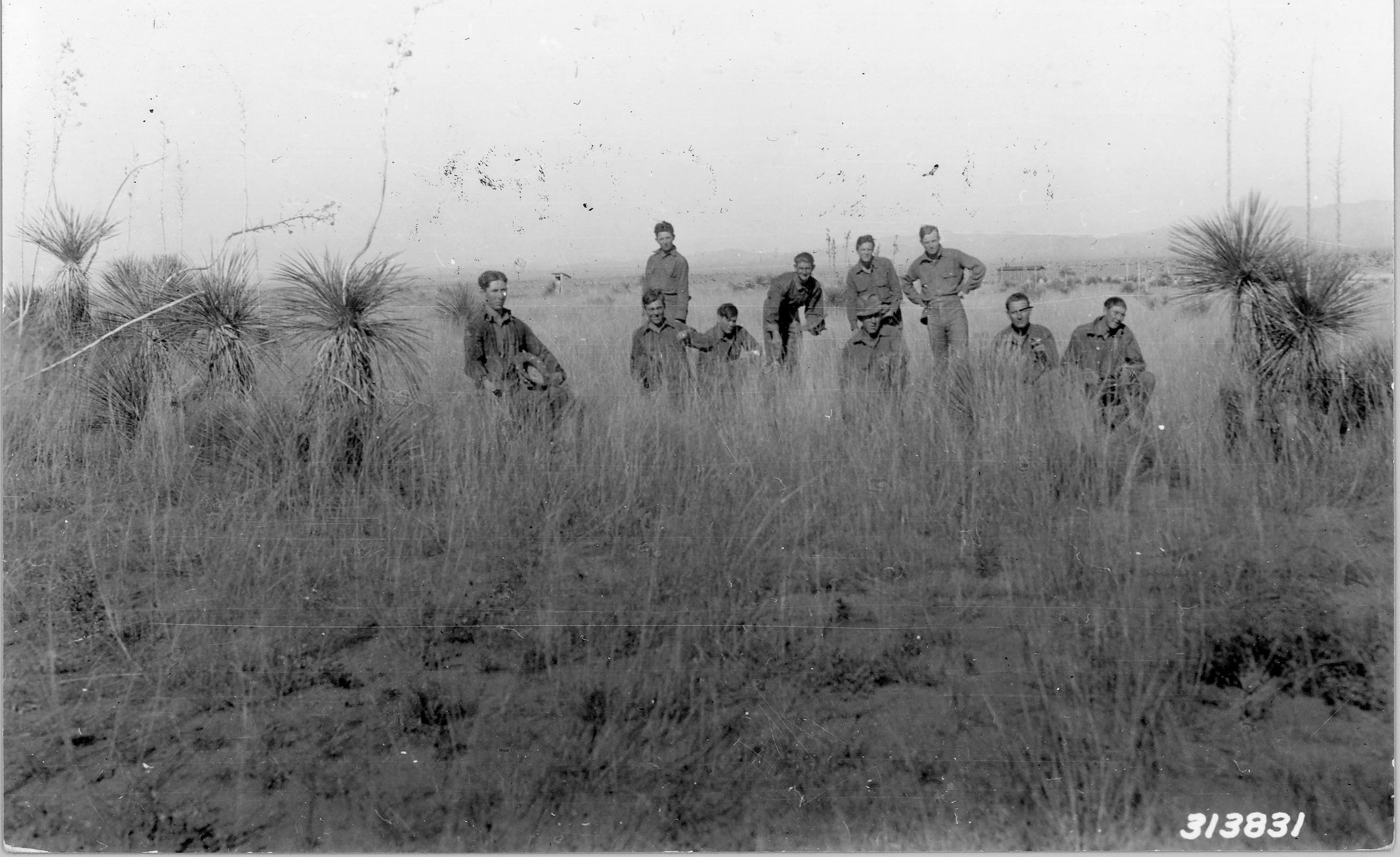 Civilian Conservation Corps (CCC) crew from F-39-N picking seeds. Nov. 12, 1935